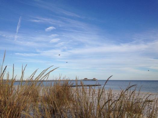 gulf-coast-1093013_1920